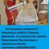 Svetlana27