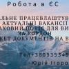Юрій Ігорович